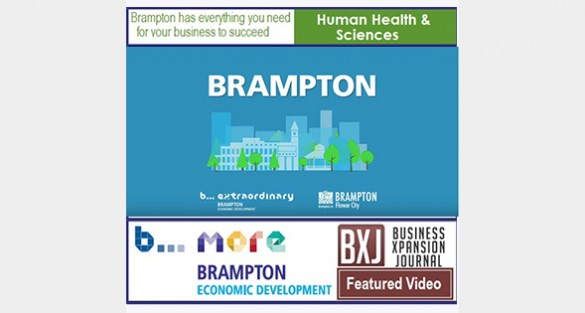 Brampton Economic Development