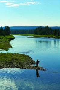 A fly fisherman put his skills to work at Yellowstone National Park. Wyoming offers boundless fishing, hunting and outdoor recreation opportunities. Photo: Wyoming Business Council